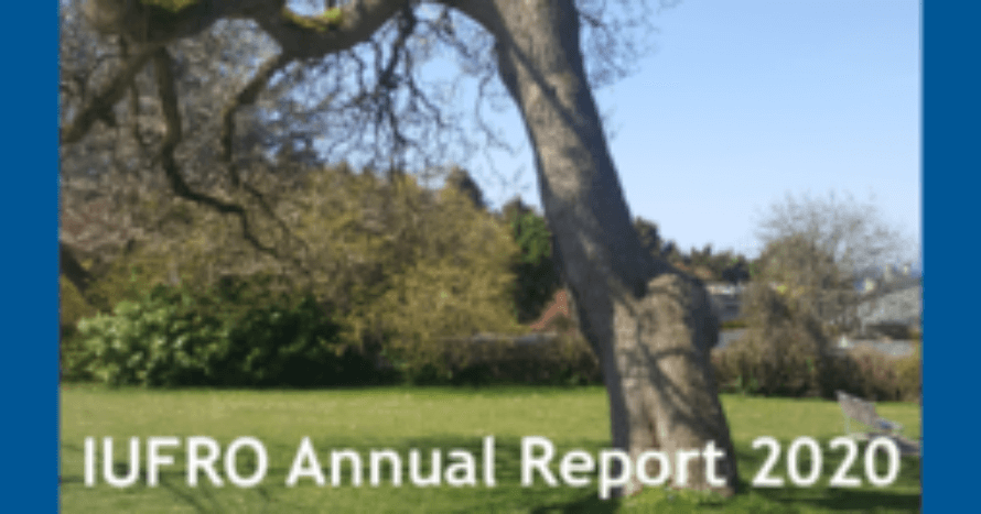 IUFRO-annual-report.png