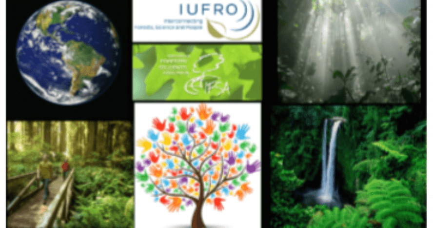 IUFRO-collage.png